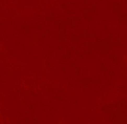 Rot Bild.webp
