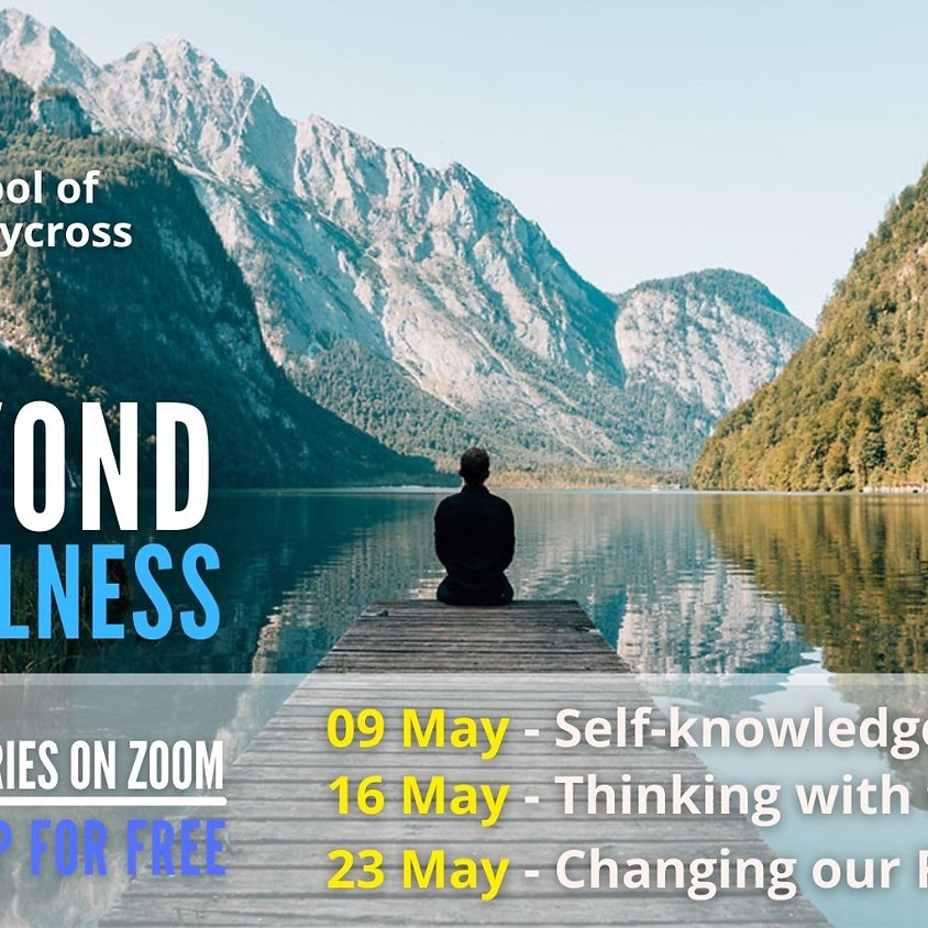 Beyond Mindfulness: Changing our Reality  - Americas/Europe/Africa
