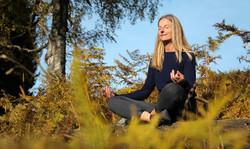 Regula Yoga Talalpsee Print