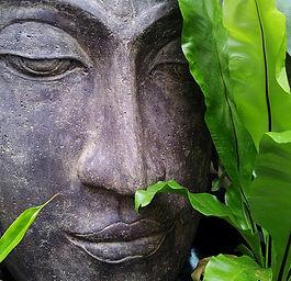 Bild Meditation.jpg