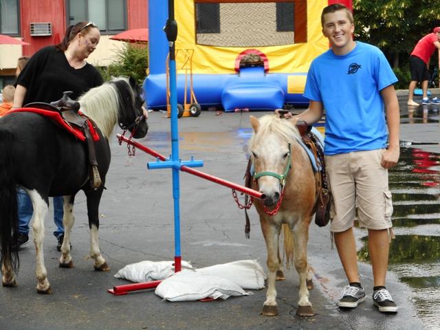 Fair Ponies