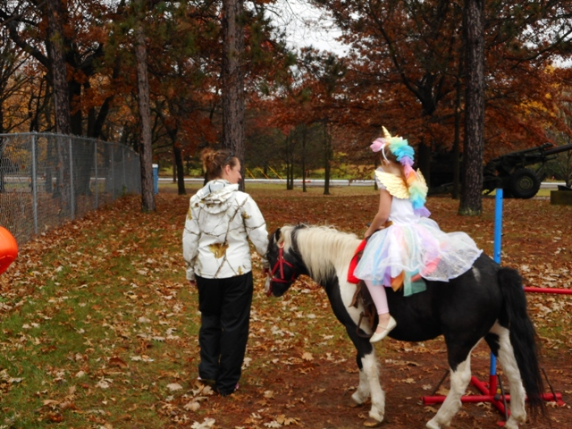 Princess on a Pony
