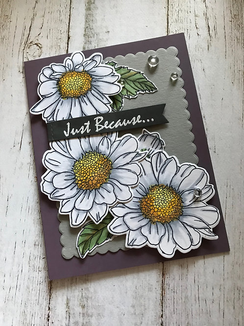 Just Because with Daisies Blank Card