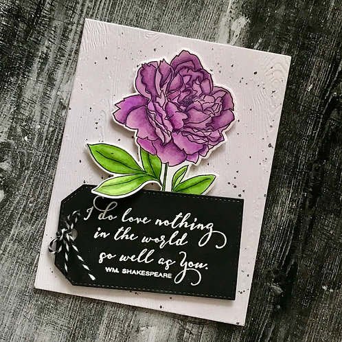 Love Nothing so Well as You Blank Card