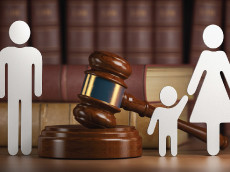 Trial Court's Grandparent Visitation Order Was Remanded to Develop Specific Findings as Required