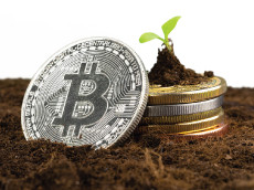 Cryptocurrency in Estate Planning, Live Webcast, Aug. 31