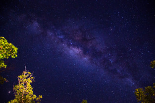 Milky Way, is an Emu - the creator, according to the Aboriginal Dreamtime, Elcho Island