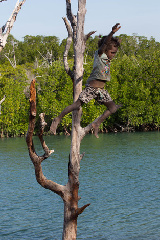 Indigenous Child jumping off a tree, Elcho Island