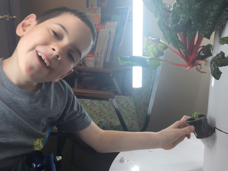 Henry, Interactive Metronome and Tower Garden! I Love My Job!