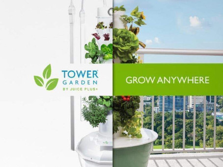 Welcome to the Future of Tower Gardens