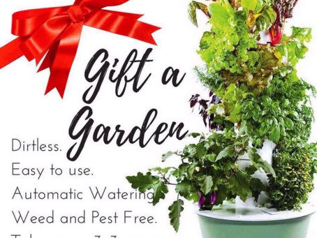 Start Healthy for the Holidays!  Gift a Garden for the Holidays!