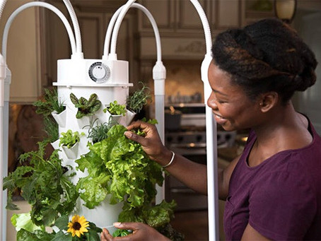 Introducing Tower Garden HOME: Eating simple just got a whole lot simpler!