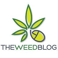 The+Weed+Blog+ +Marijuasana+ +Yoga+Video
