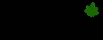 hashstoria logo.png