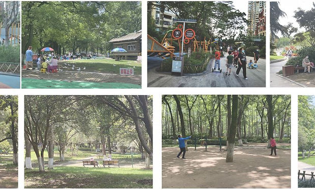 Research on the urban open and green spaces in the light of the pandemic.JPG