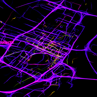 Visualization of Montreal commuters
