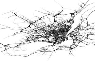 Sketchy Traffic