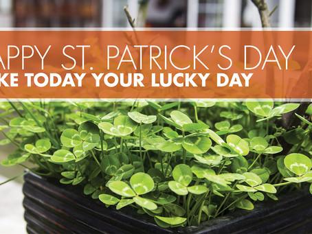 🍀🍀Happy St. Patrick's Day! 🍀🍀