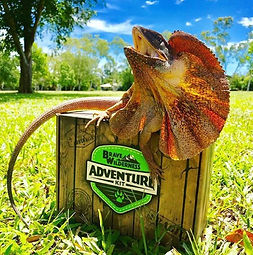 Lizard-with-Adventure-kit-box.jpg