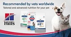coolum vet noosa veterinarian emergency animal