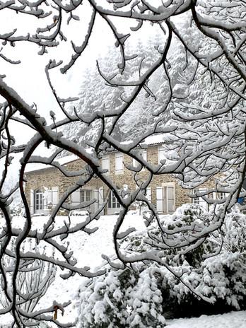 Vue ferme avec branches et neige.jpg
