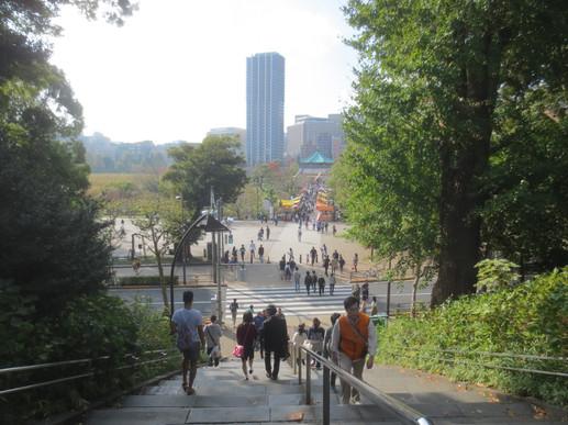 2018_11_10 Tokyo Ueno Zoo  Saturday Day