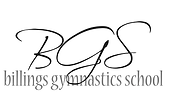 bgs logo.PNG