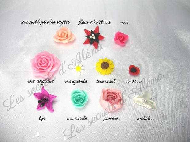 sl_fleur_20les_20secrets_20d_27al_C3_A9n