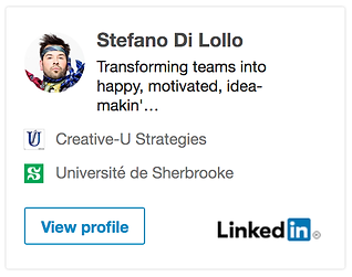 STEFANO DI LOLLO LINKEDIN BADGE.png
