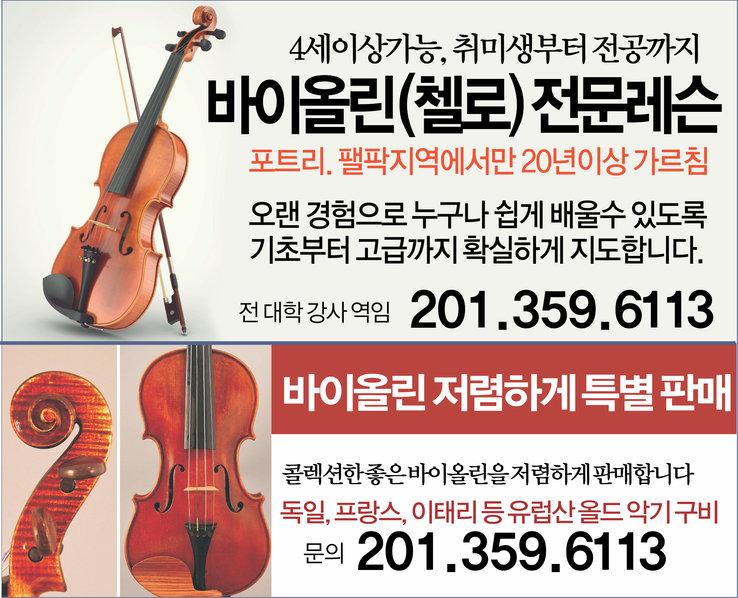 바이올린첼로.jpg