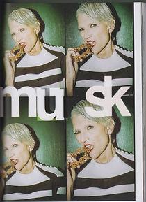 musk2 001.jpg