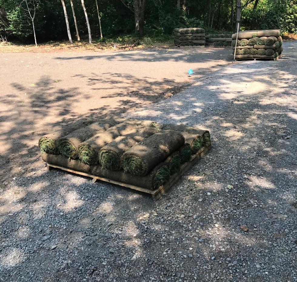 lawn installation 1
