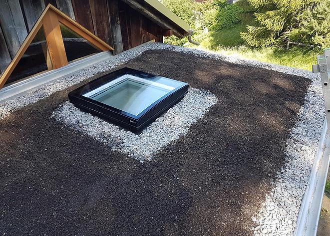 dachfenster wechler