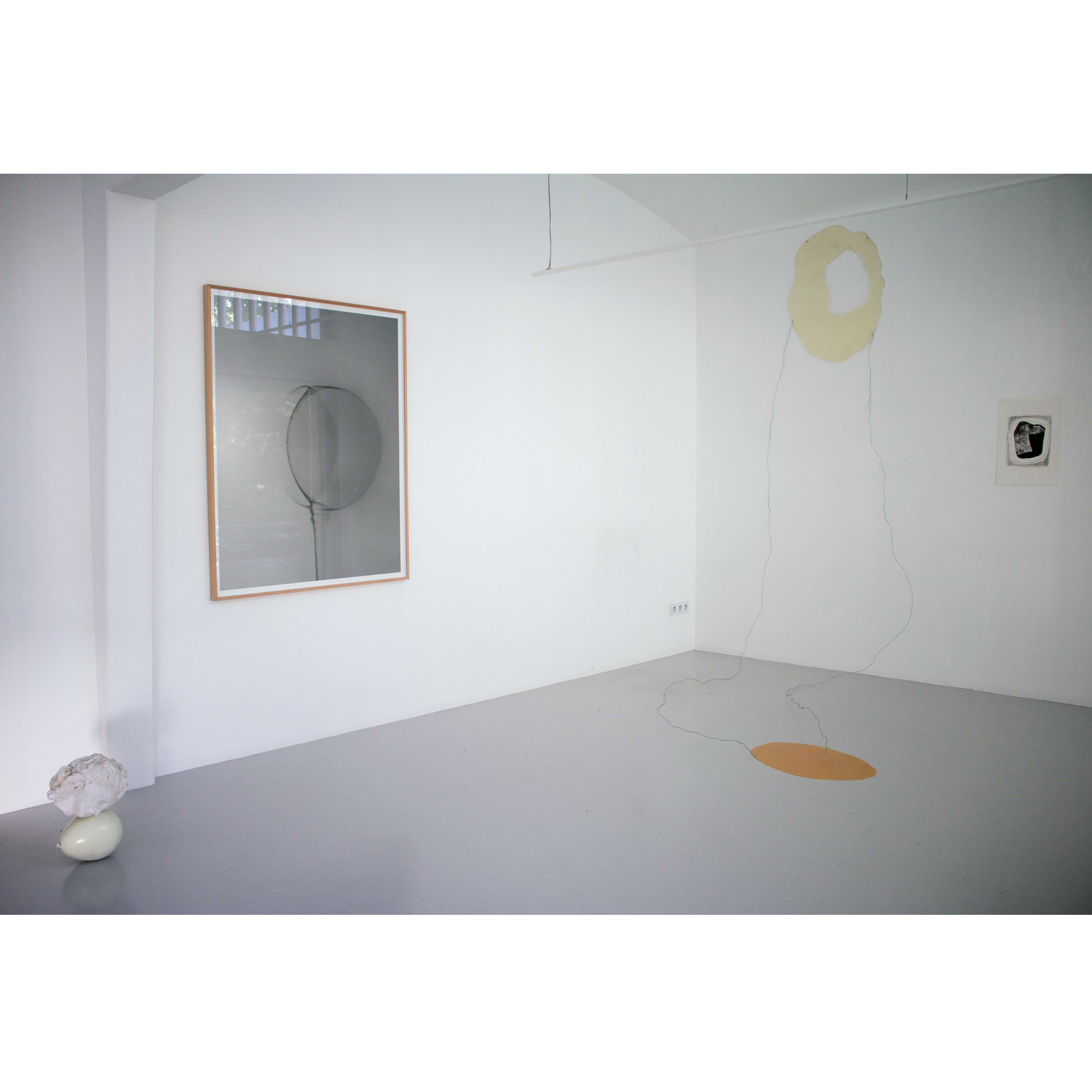 Exhibition Views. Studies on the Pos