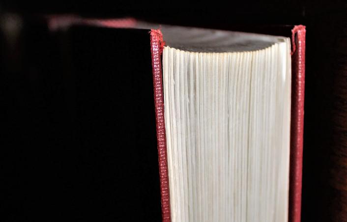 Mary - chapel book. jpg.JPG
