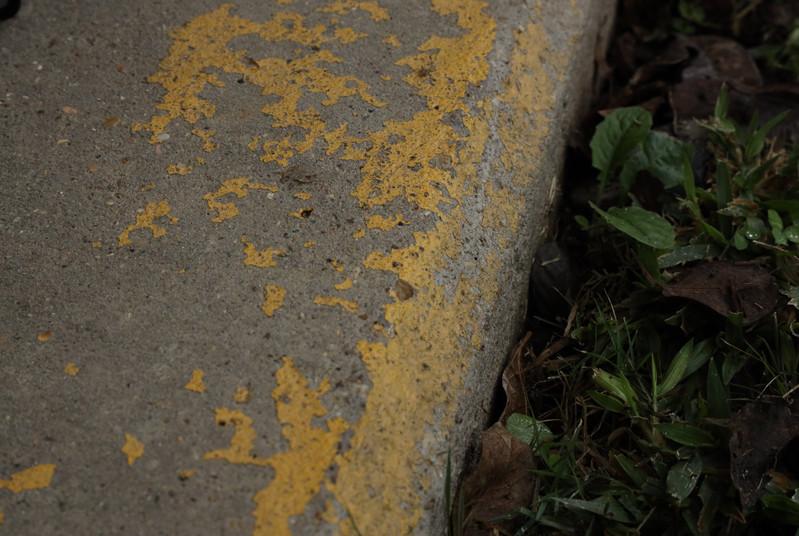 Eva Faded Yellow Wabi Sabi.JPG