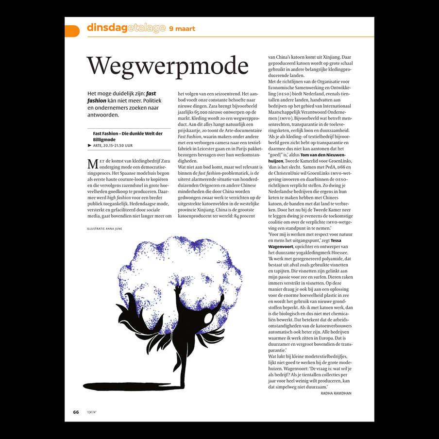 wwm_vpro02.jpg