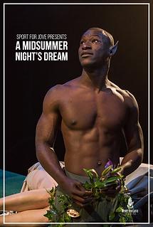 Midsummer Vimeo Poster.png