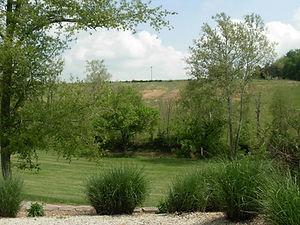 creek view.jpg