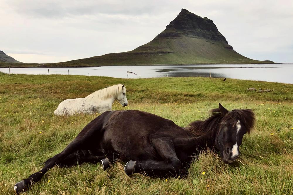 Kirkjufellsfoss, Iceland