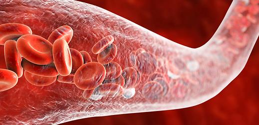 Simulation of blood flowing through vein