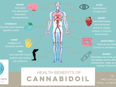 Four CBD Benefits You Need To Know - Blog