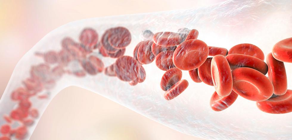 blood cells traveling thorough vein