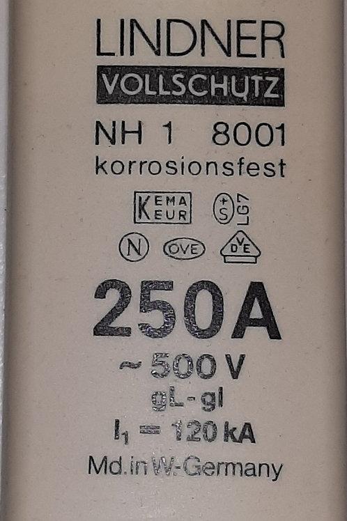 250A NH1 Fuse - Linder