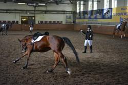 Валерия Липатова разминает лошадь перед соревнованиями