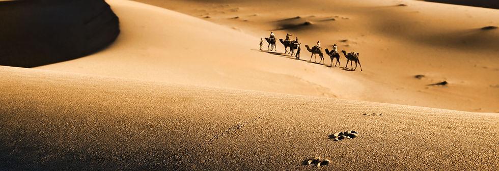 caravan-in-desert-PNR23KZ.jpg