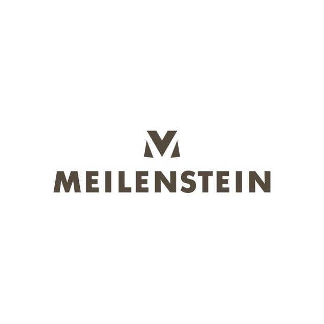 Logo Meilenstein