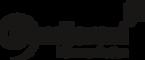 logo_dundjerski + 10 jahre_schwarz.png