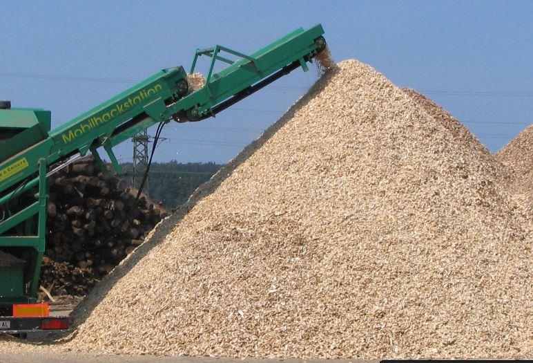wood cheps