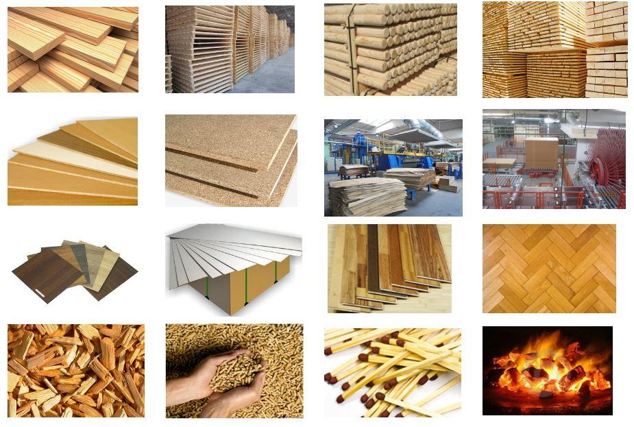Wood Galaeri
